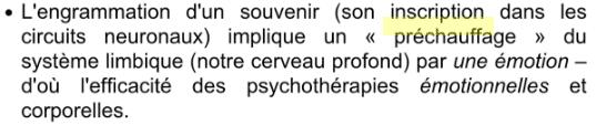 Neuroergonomie - Prechauffage neuronal
